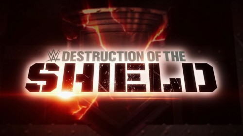 Destruction of The Shield on WWE Network