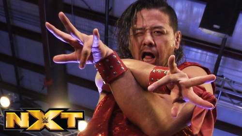 Watch NXT only on WWE Network – Wednesdays at 8E/5P